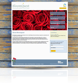A preview image of web,printdesign work in Taunton for Bloomquest